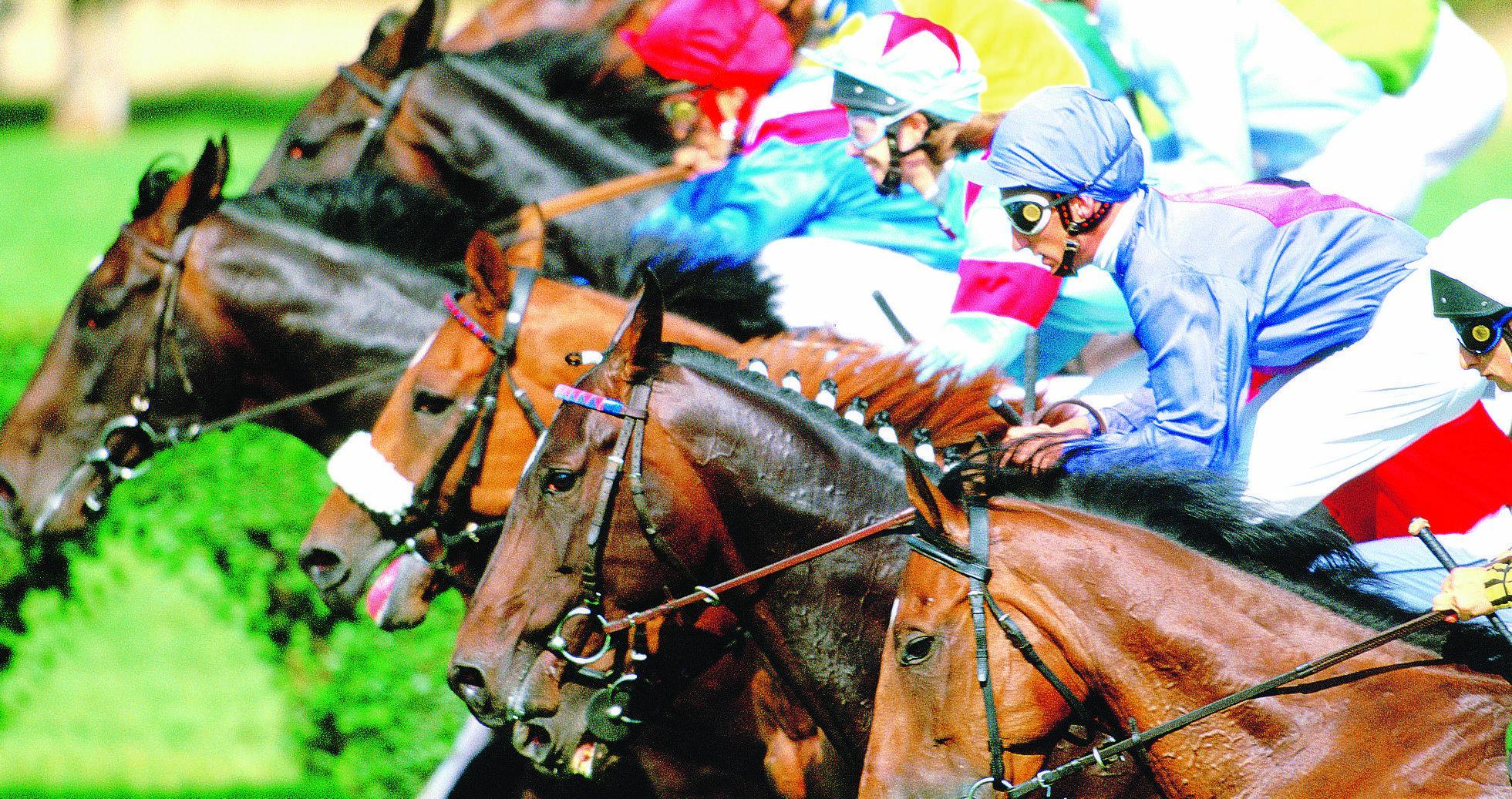 Scommesse quei cavalli da delirio - Cavalli allo specchio ...