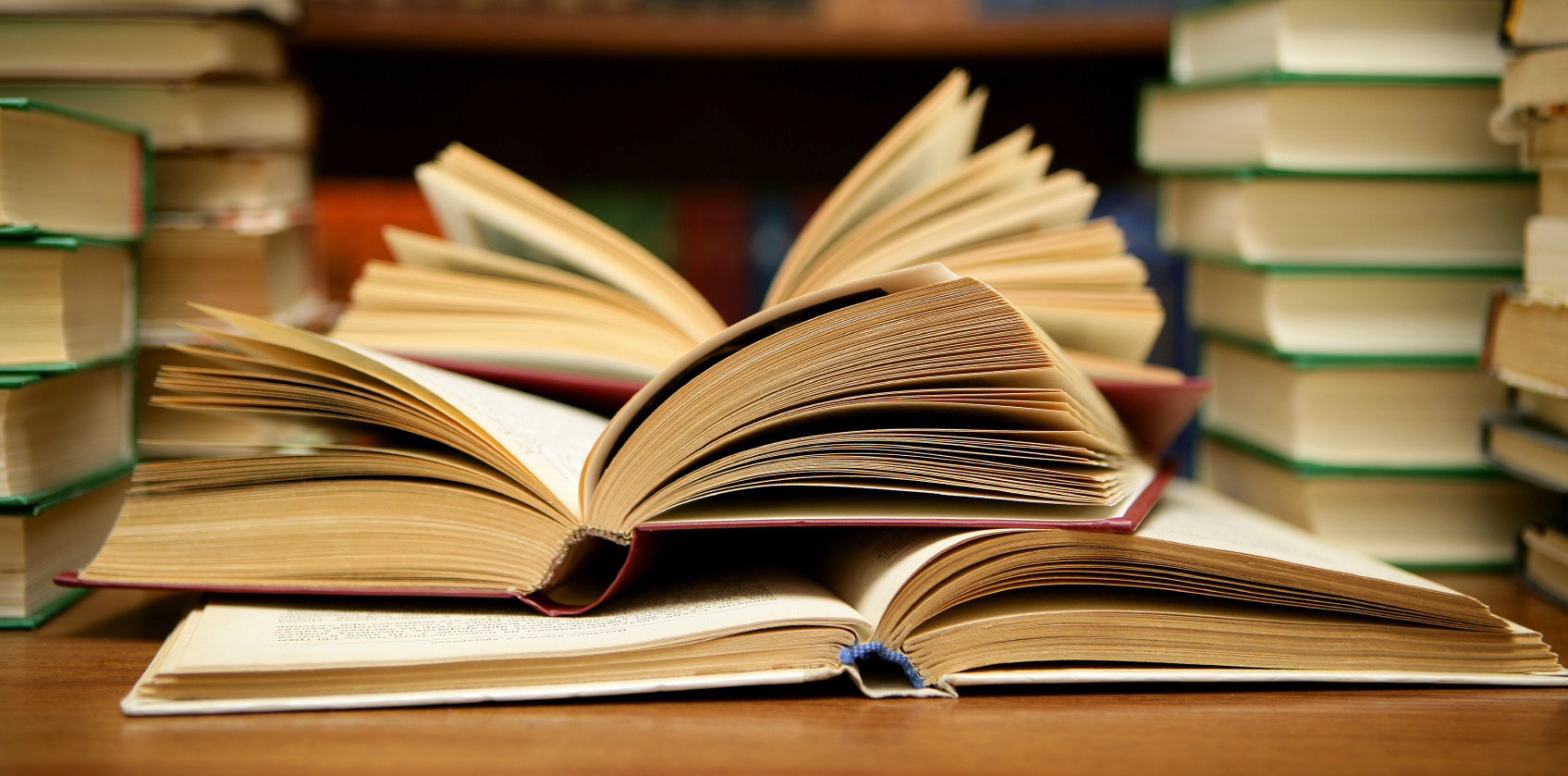 Risultati immagini per bambina legge libri