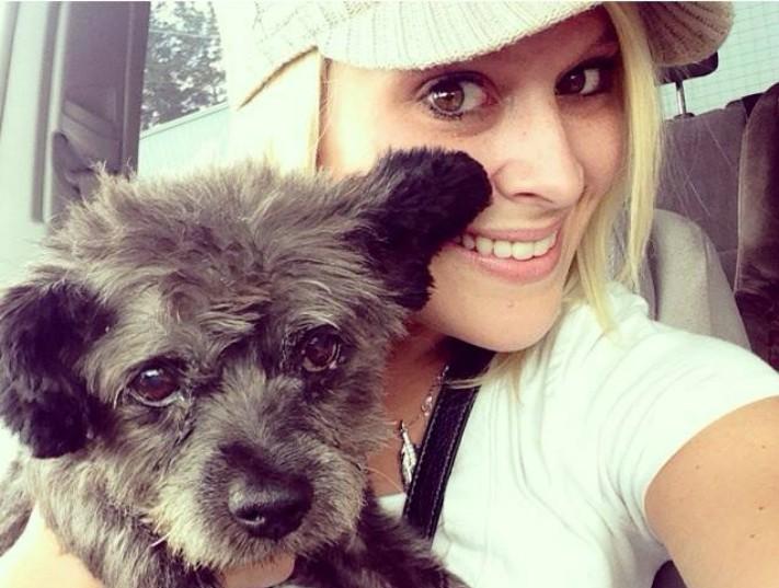Adotta cane morente render felici i suoi ultimi giorni - Cane allo specchio ...