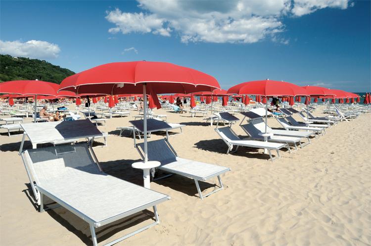 Vacanze l 39 ombrellone pi caro ad alassio a gallipoli for Vendita palme da giardino prezzi