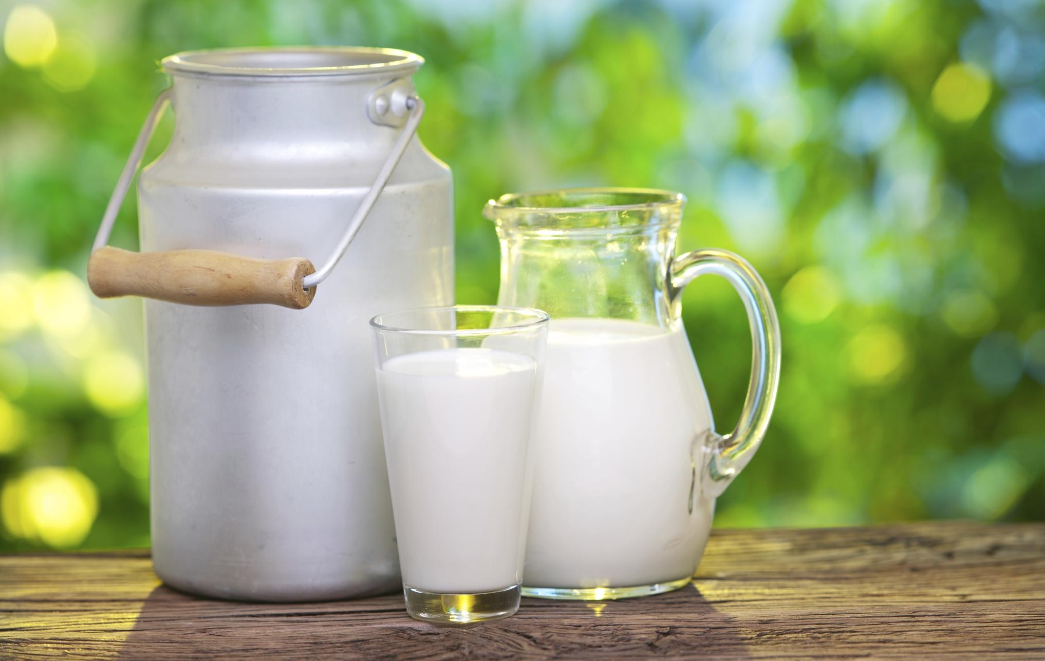 Risultati immagini per latte
