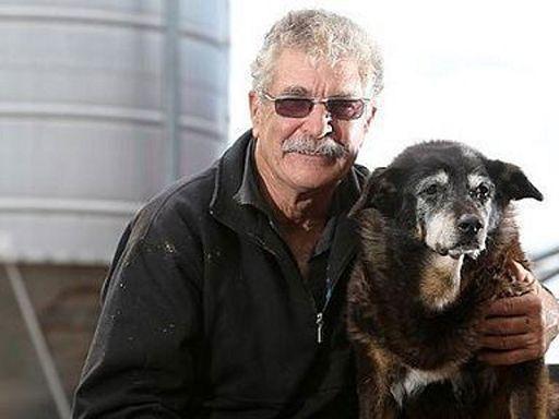 Addio al cane matusalemme era il pi vecchio del mondo - Cane allo specchio ...