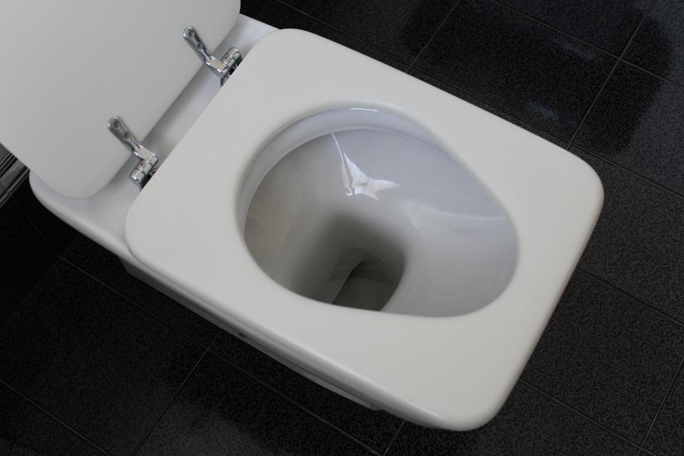 Viene morso al pene mentre si trova sul wc - Foto wc opgeschort ...
