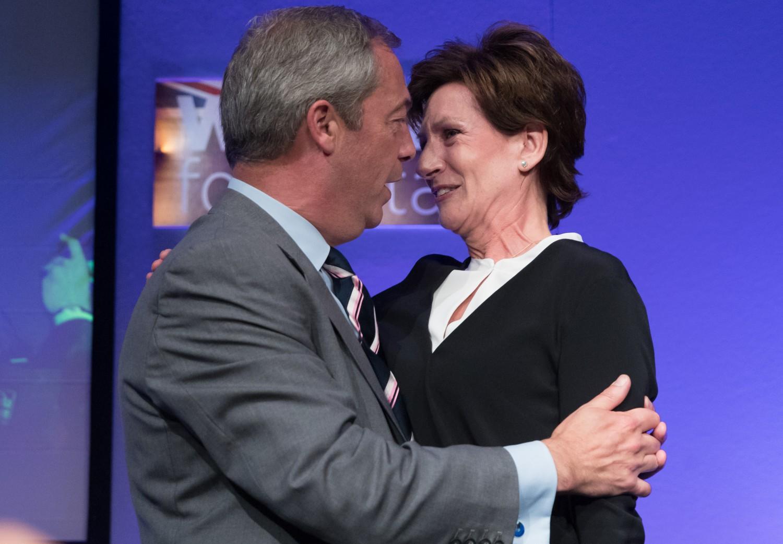 Chi è Diane James, la donna che guiderà l'Ukip dopo Farage