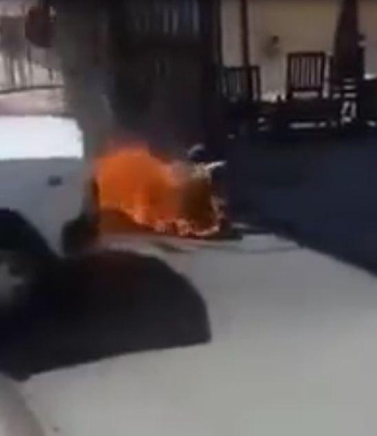 Egitto, video choc: tassista si dà fuoco per protesta contro il governo