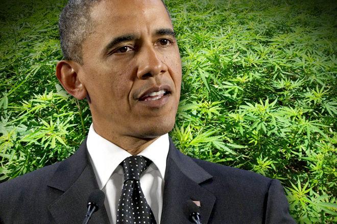 """Obama: """"La marijuana va trattata come sigarette e alcool"""""""