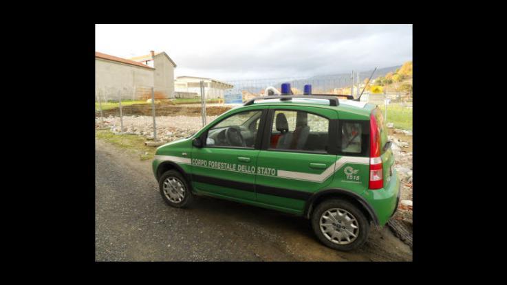 Arezzo festa al comando della forestale per la vittoria for Decorazione provinciale francese con un budget
