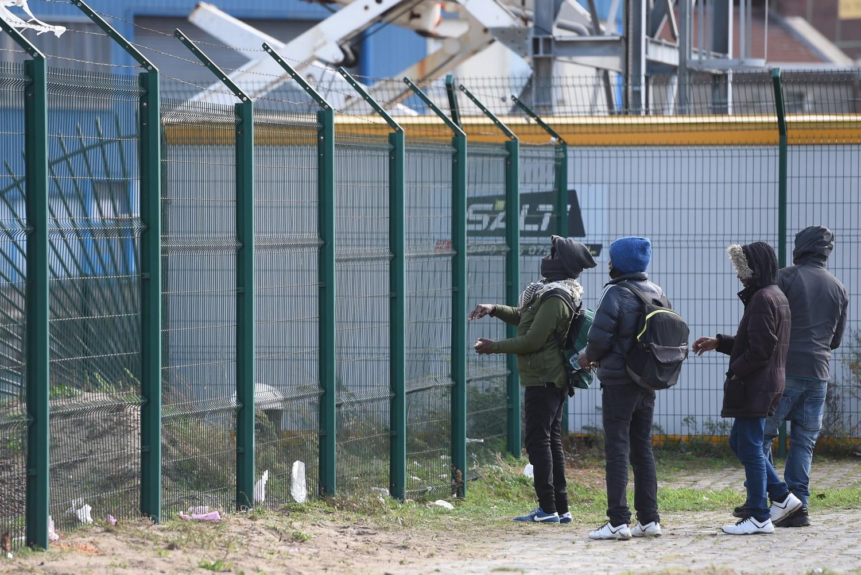 Nigeriano arrostisce un cane: banchetto choc al centro migranti.