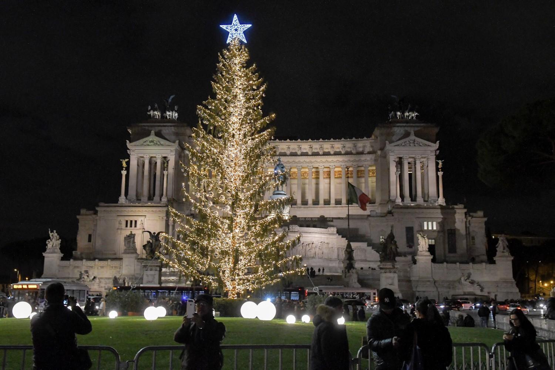 Ecliss Milano E L Ora Del Natale : La previsione del botanico quot spelacchio è malato sta già