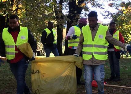 Stop ai profughi nella cura del verde urbano