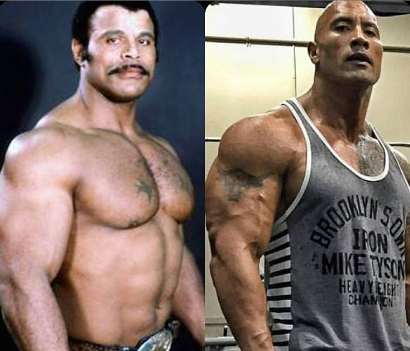 Morto Rocky Johnson, celebre ​wrestler e padre di The Rock