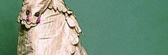 Cento anni di pizzi e merletti in dodici abiti da collezione ...