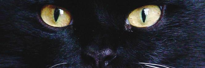 Occhio si butta il malocchio cos si vince la superstizione - Rompere uno specchio porta fortuna ...
