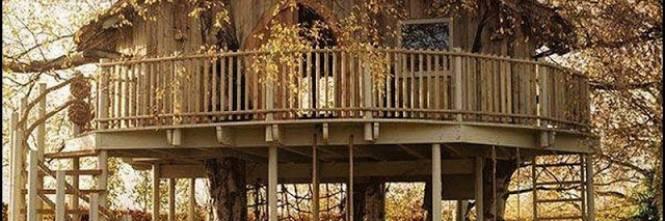 Chic ecologica e no imu ecco la casa sull 39 albero - Costruire case sugli alberi ...