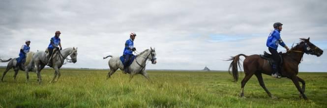 Campionati del mondo sport equestri muoiono due cavalli - Cavalli allo specchio ...