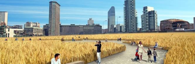 Il campo di grano spunta a Porta Nuova 1