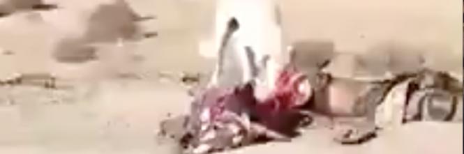 cani mangiano i copri dei terroristi dell'isis