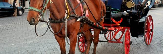Roma stop alle botticelle quelle elettriche sostituiranno i cavalli - Cavalli allo specchio ...