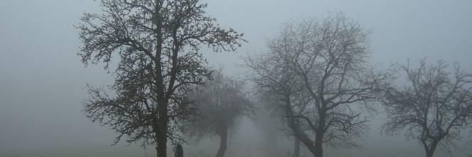 Nebbia friulana in barattolo: la comprano in tutto il mondo - IlGiornale.it
