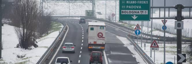 Perugia Orrore In Superstrada Cuccioli Lanciati Da Unauto