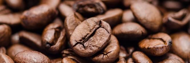 Caffè, tutta la verità: dodici tabù da sfatare sulla tazzina quotidiana
