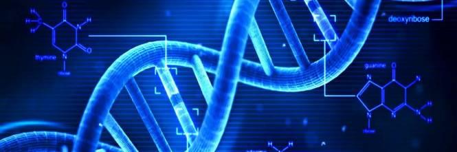 Tumore al polmone, scoperta molecola che blocca la malattia