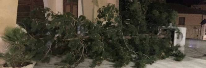 """Tetti crollati, alberi sradicati e decine di feriti: il bollettino """"di guerra"""" del vento 1"""