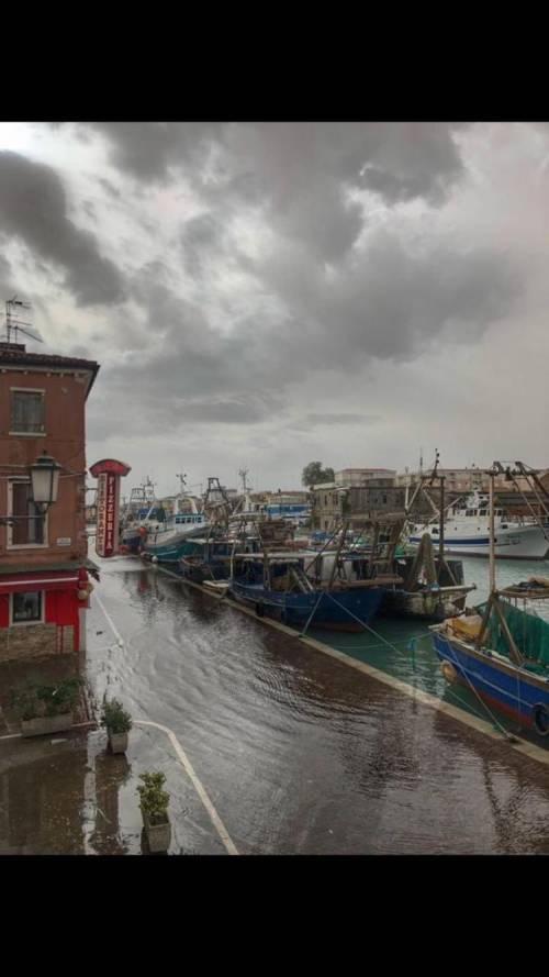 Maltempo in Veneto. Ponte della Priula: crolla il ponte 13