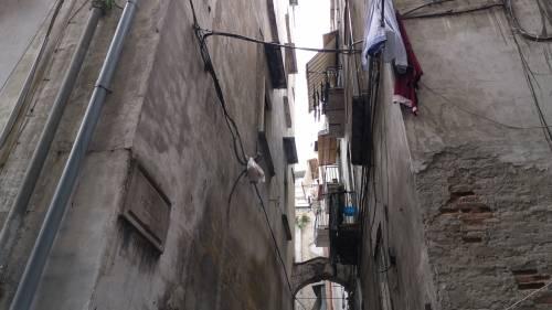 Il vicolo-discarica nel centro storico di Napoli 8