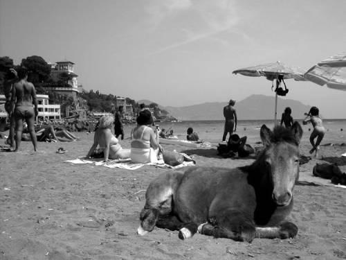 Arte in vacanza a Santa Margherita