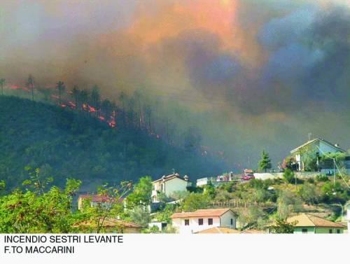 La Liguria brucia, milioni in fumo