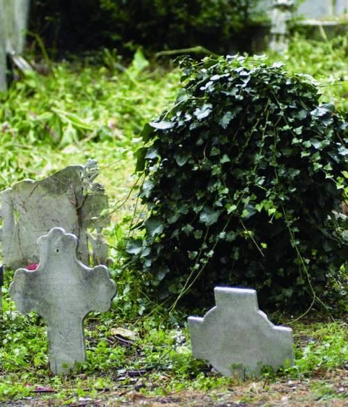 Erbacce, rifiuti e bare bruciate nei piccoli cimiteri del levante