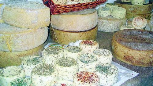 Franciacorta in bianco, il trionfo dei formaggi