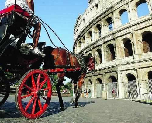 Roma, controlli a Testaccio sulle condizioni di oltre settanta cavalli
