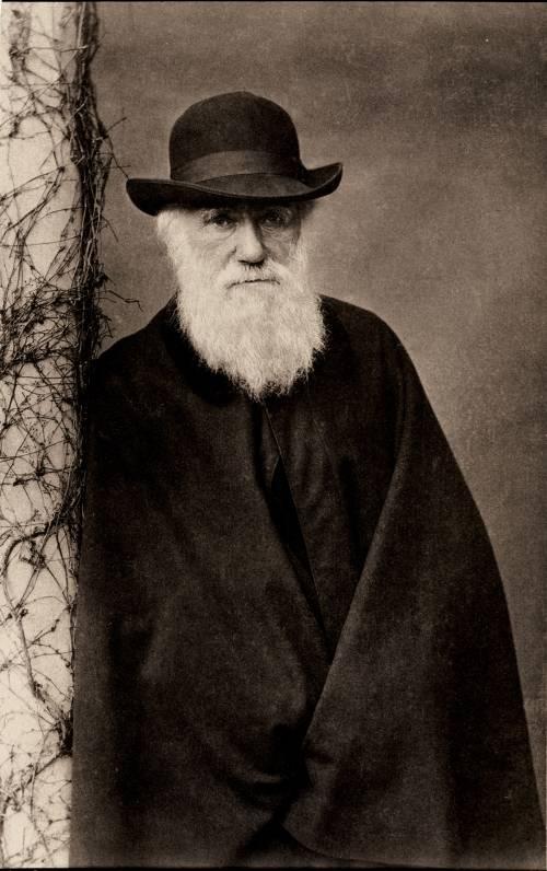 Gli evoluzionisti credono di essere Dio
