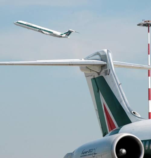 Linate, aereo investe lepre  paura per i politici a bordo  Il velivolo bloccato a terra