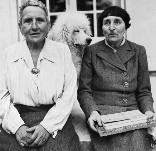 """Picasso contro Gertrude: """"Maiale, anzi ippopotamo"""""""