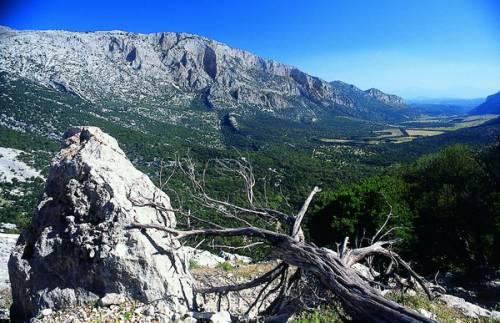 Sardinia Raid Adventure, sfida estrema dal Supramonte al golfo di Orosei