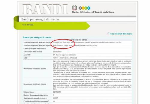 """Il pecorino diventa pecorina E il Ministero si scusa: """"Grazie a chi segnala errori"""""""