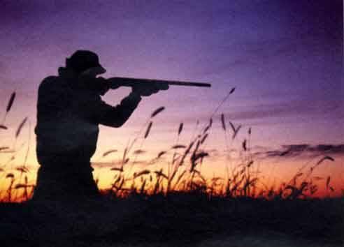Tra peppole e fringuelli la Lega sbaglia mira Sconfitta sulla caccia