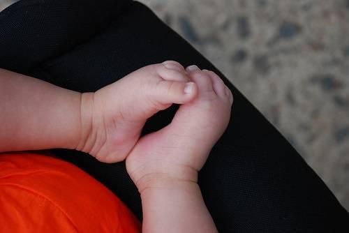 Belluno, il prete regala 500 euro ai nuovi nati: anche da coppie di fatto