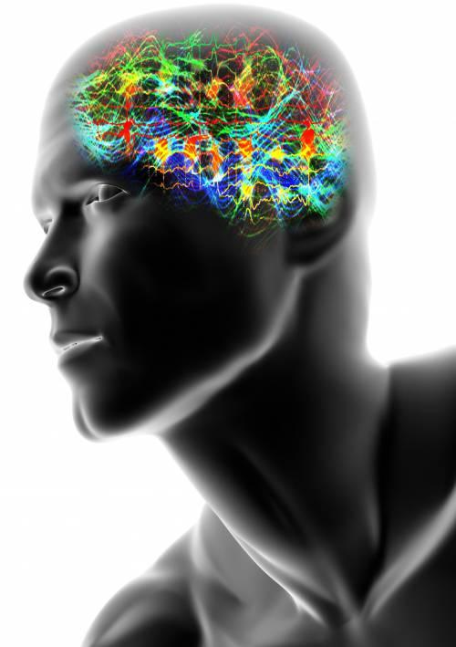 Se la neuroscienza arrogante vuole imporre la «morale unica»