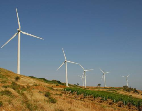 L'energia pulita sporca le vigne del Primitivo