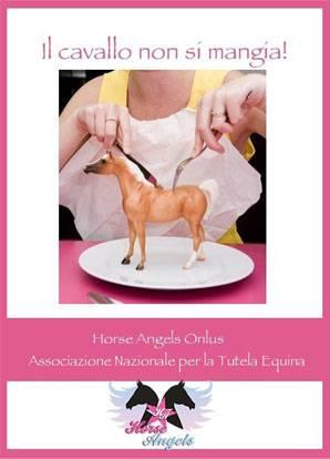 Horse Angels: scandalo carni equine, cosa succede ai cavalli a fine carriera?