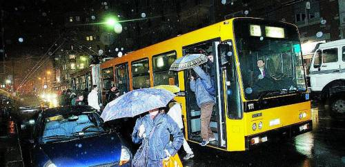 Bus notturni: tante linee, pochi passeggeri