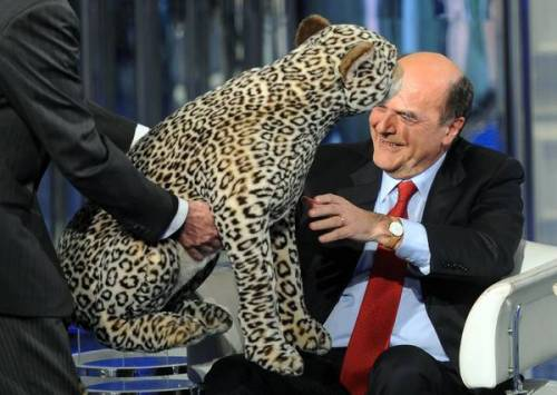 """Bersani: """"Abbiamo dato una smacchiatina a Berlusconi"""""""