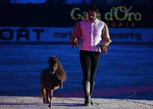 Ritrovato Charlie, il pony più piccolo al mondo