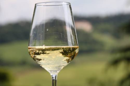 """Weekend """"frizzante"""" alla scoperta dei vini piacentini"""