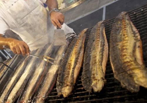 Anguille, tartufi e aceto balsamico sulle vie del gusto