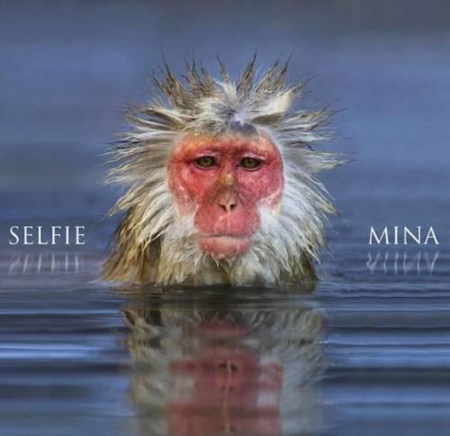 """Nel """"Selfie"""" di Mina una lezione di eleganza pop"""